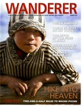 Wanderer: Spring 2015 by Columbia College Chicago